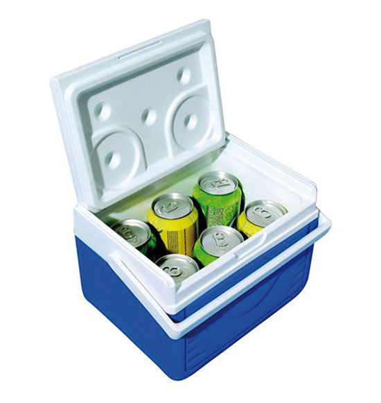 Small cooler 4,7 litres
